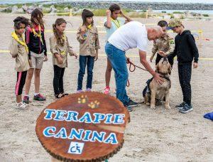 Terapie Canina